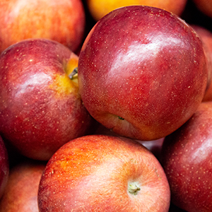 buffalo-ridge_winecrisp-apples_sm.jpg