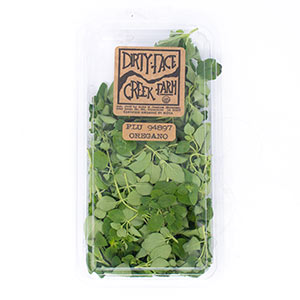 dirty-face-creek-farm_organic-oregano.jpg