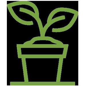 garden-starters.png